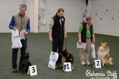 Arven Bohemia Staff obedience