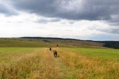Krušné hory - Moldava