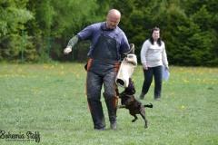 sportovní výcvik ZVV 2